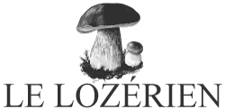 LE LOZERIEN